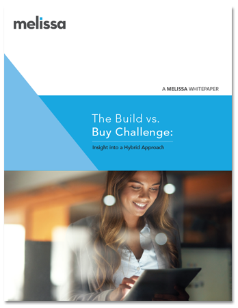 White Paper - The Build vs. Buy Challenge