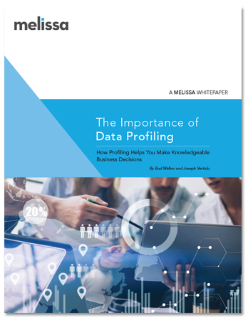 White Paper - The Importance of Data Profiling